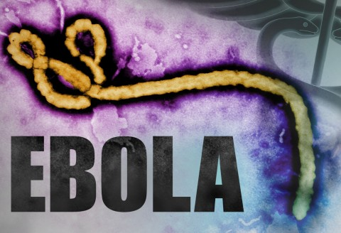 Questions About Ebola?
